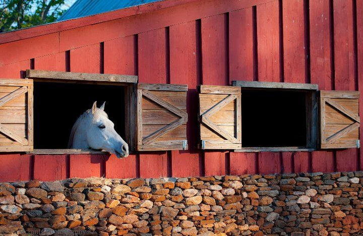 barn-and-horse